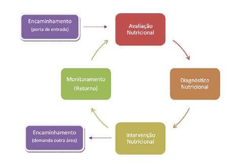 processo-nutricional